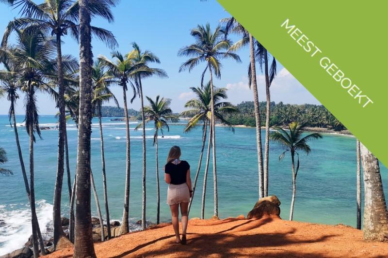 rondreis-Sri-Lanka-palmbomen-Mirissa-Sri-Lanka1